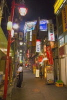 Tokyo Side Street 2010