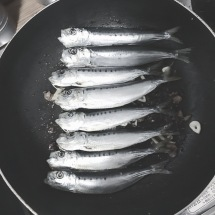 Iwashi - Sardine in Fry Pan